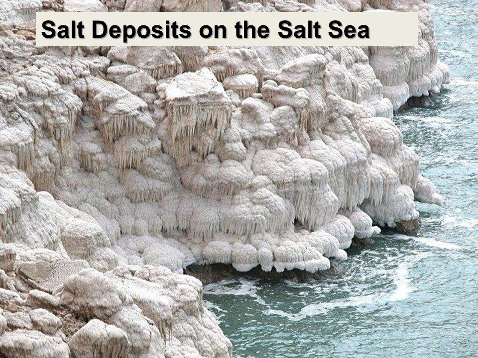 Salt Deposits on the Salt Sea