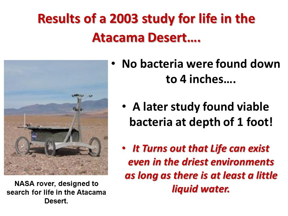 Results of a 2003 study for life in the Atacama Desert….