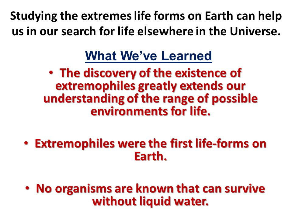 Extremophiles were the first life-forms on Earth.