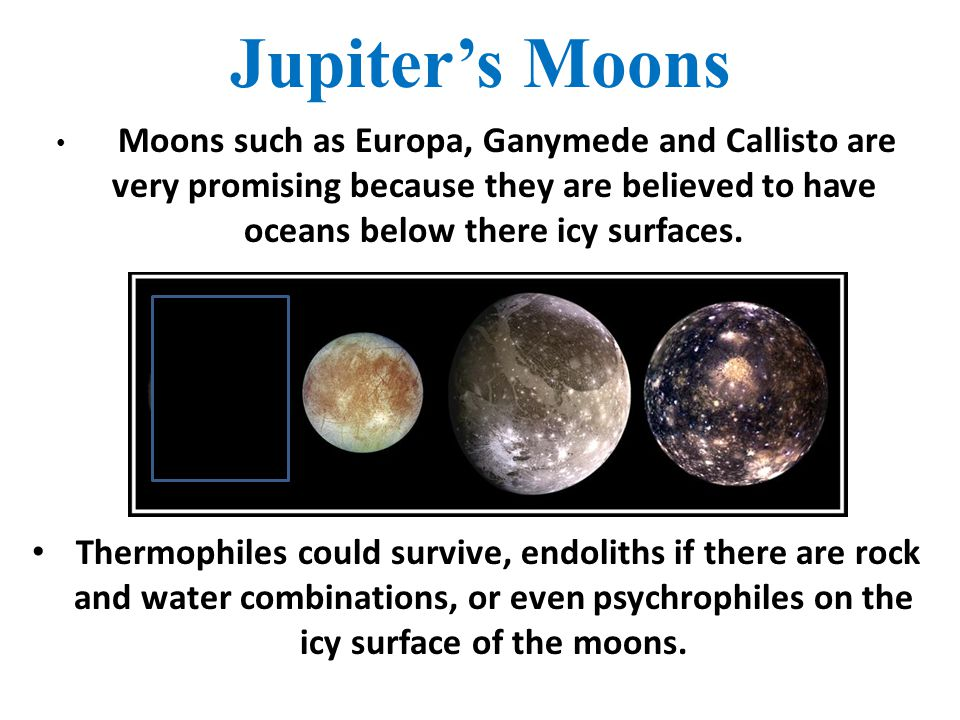 Jupiter's Moons Moons such as Europa, Ganymede and Callisto are very promising because they are believed to have oceans below there icy surfaces.