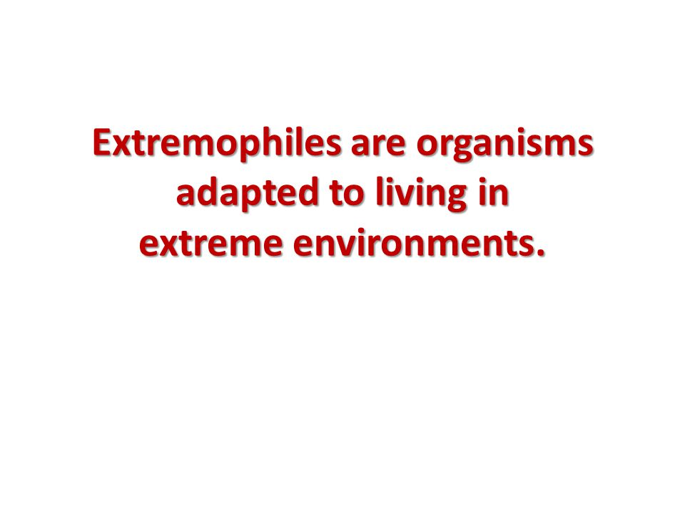 Extremophiles are organisms adapted to living in extreme environments.