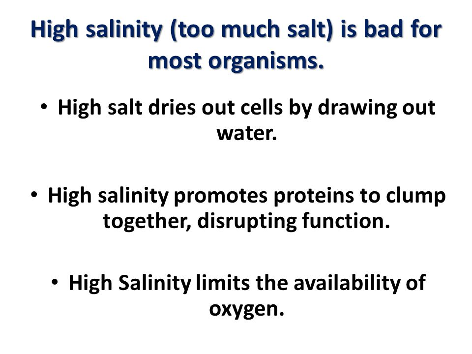 High salinity (too much salt) is bad for most organisms.