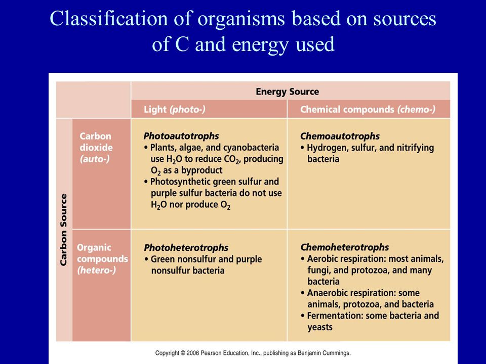 Classification of organisms based on sources of C and energy used