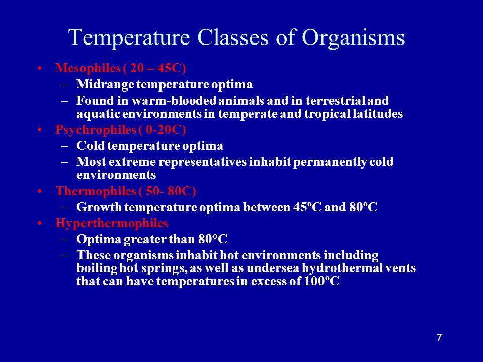 Temperature Classes of Organisms