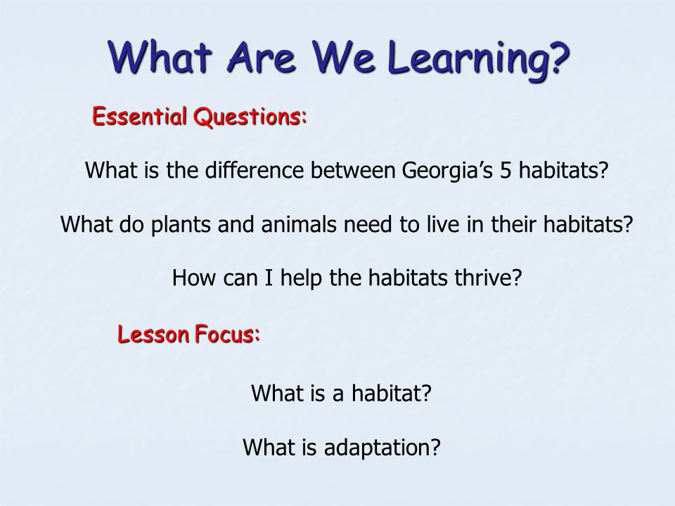 What Are We Learning Essential Questions: