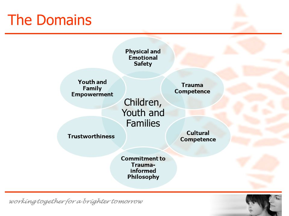 The Domains Children, Youth and Families Physical and Emotional Safety