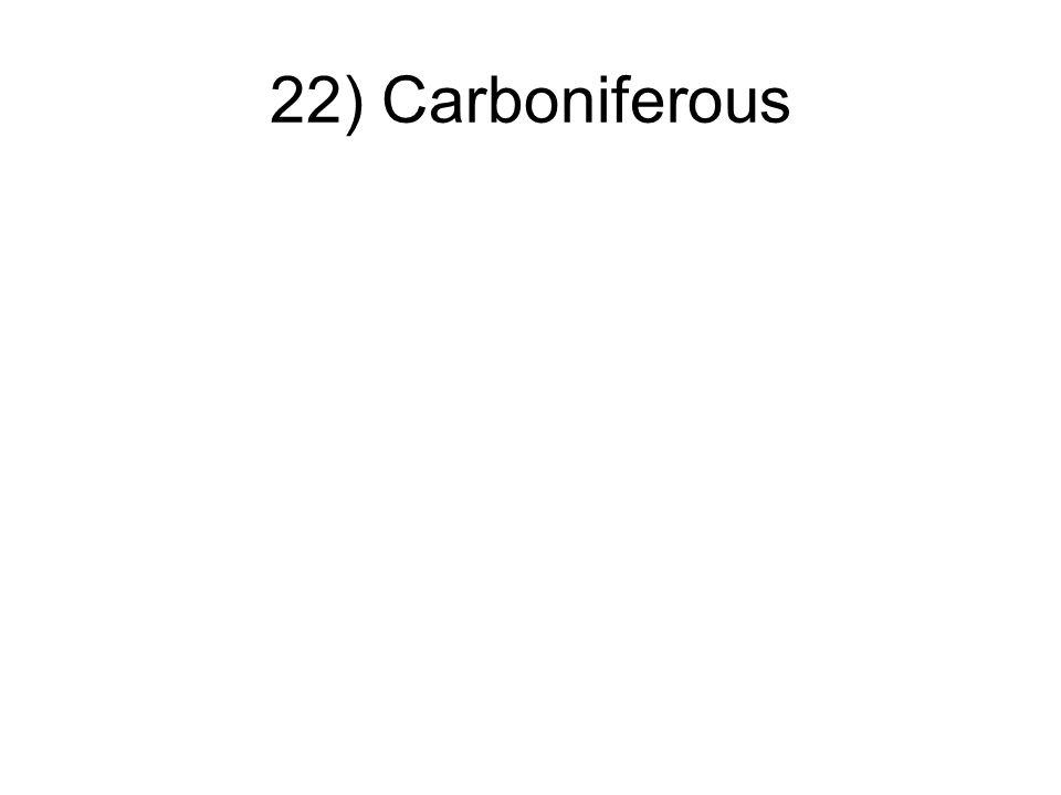 22) Carboniferous