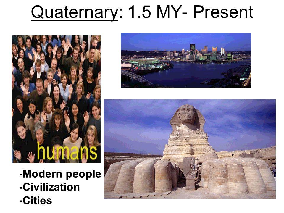 Quaternary: 1.5 MY- Present