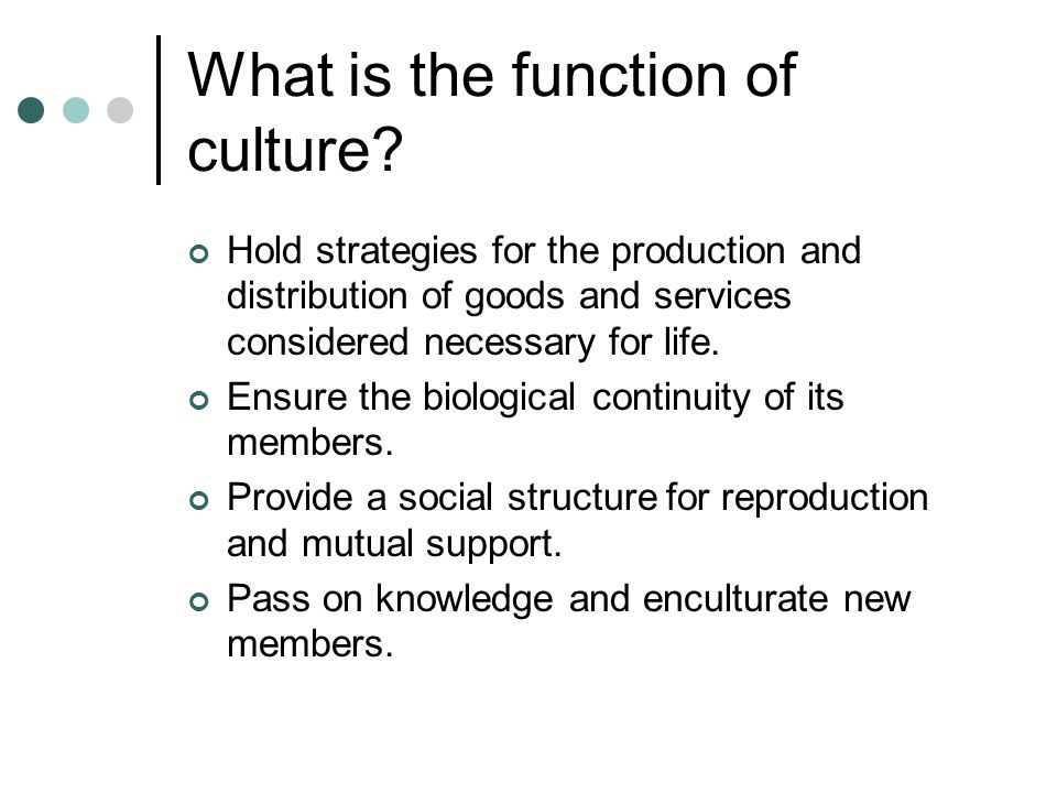 What is the function of culture