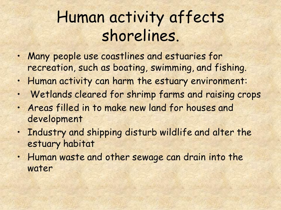 Human activity affects shorelines.
