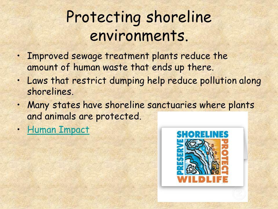 Protecting shoreline environments.