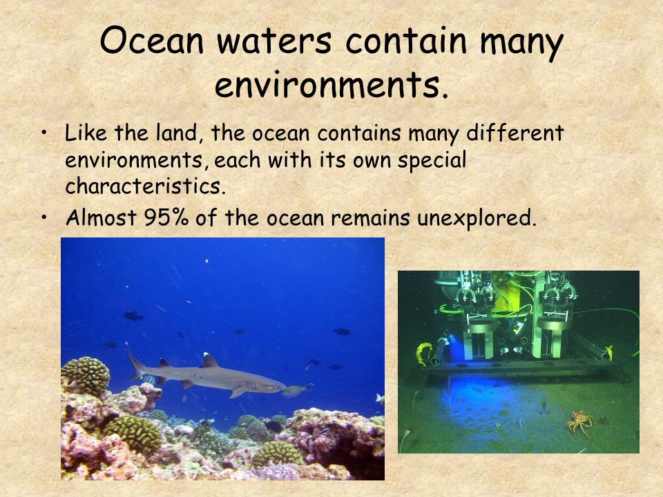 Ocean waters contain many environments.