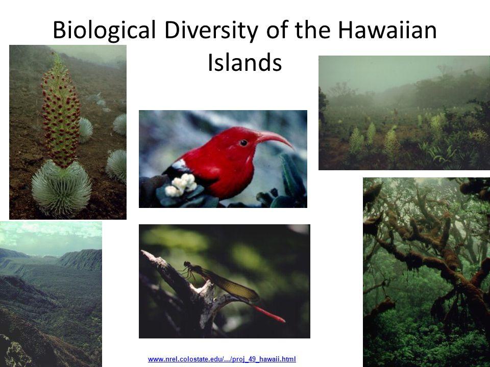Biological Diversity of the Hawaiian Islands