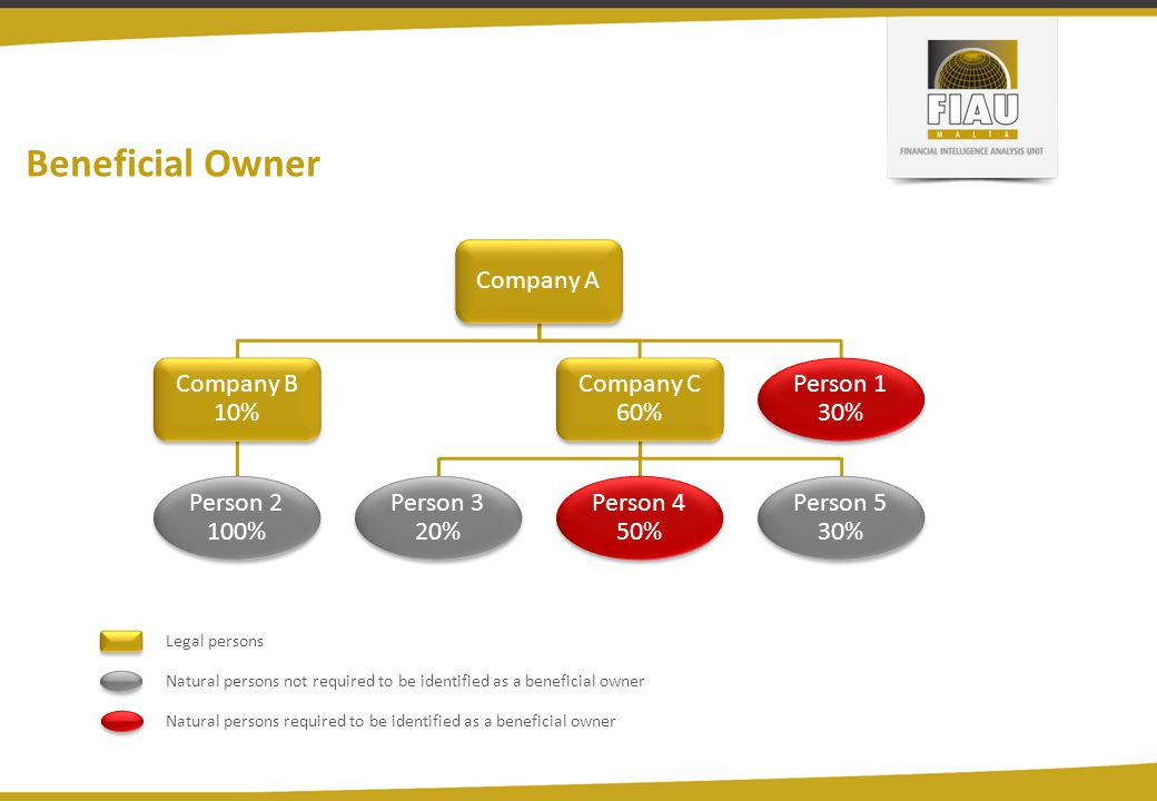 Beneficial Owner Company A Company B 10% Person 2 100% Company C 60%