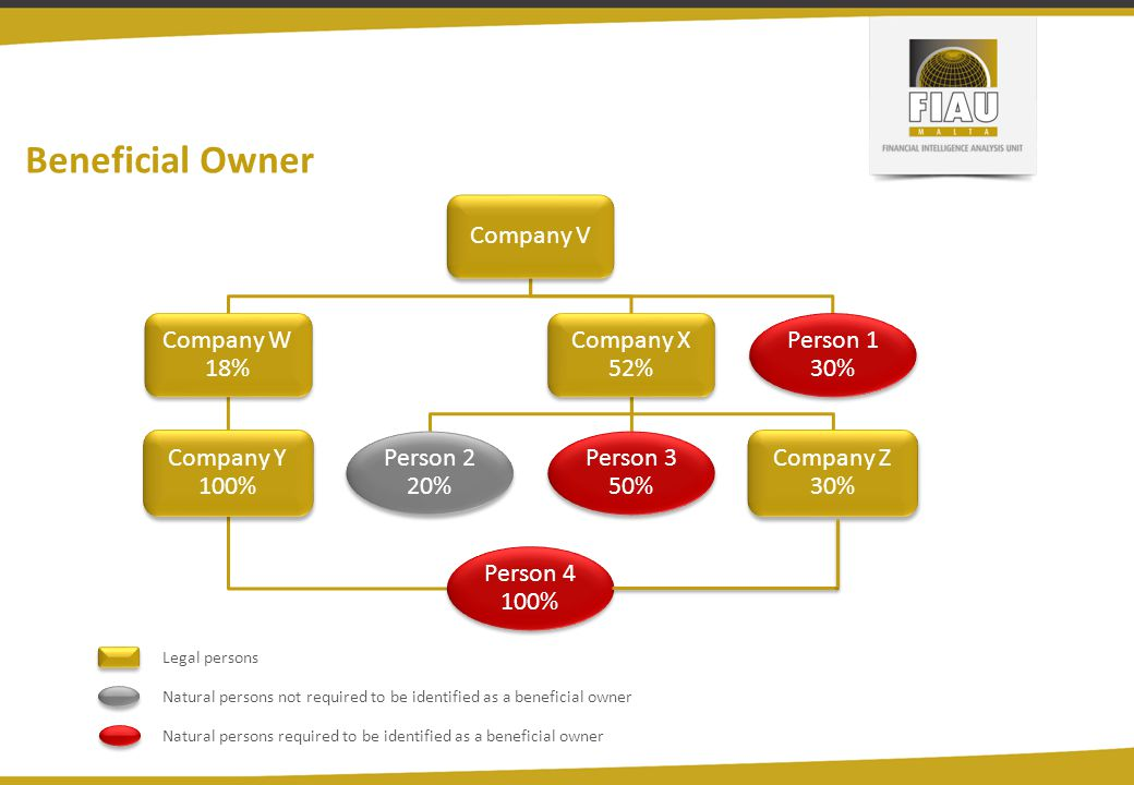 Beneficial Owner Company V Company W 18% Company Y 100% Person 4 100%