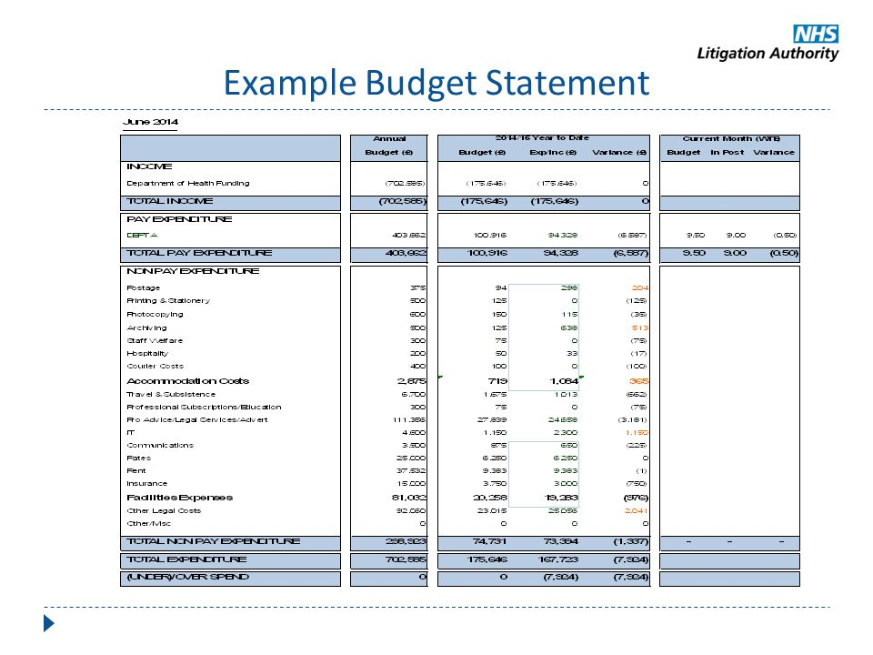 Example Budget Statement