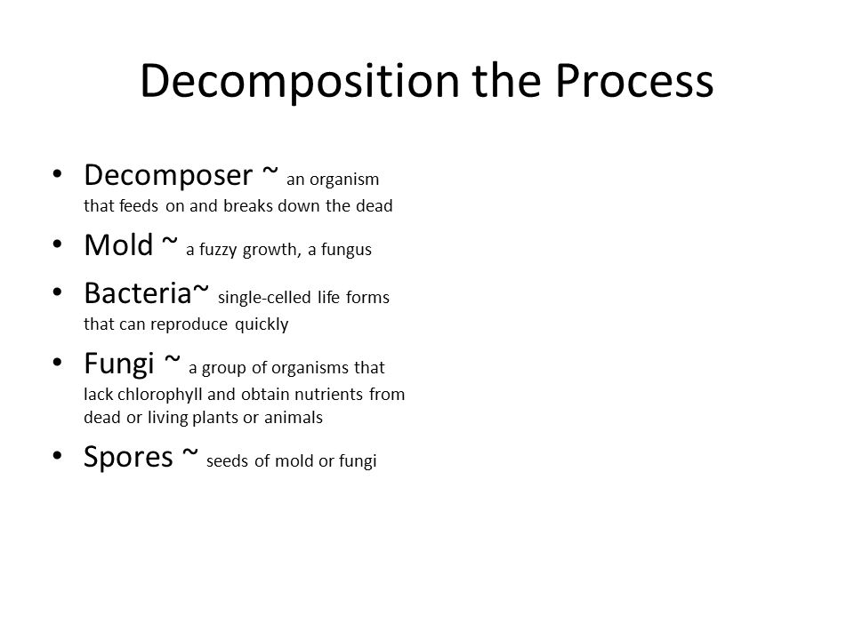 Decomposition the Process
