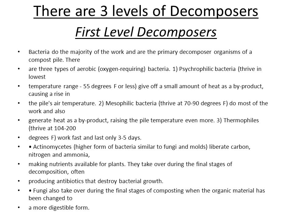 There are 3 levels of Decomposers