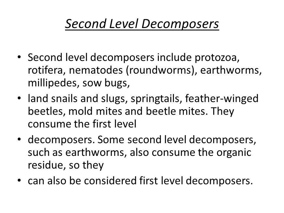 Second Level Decomposers