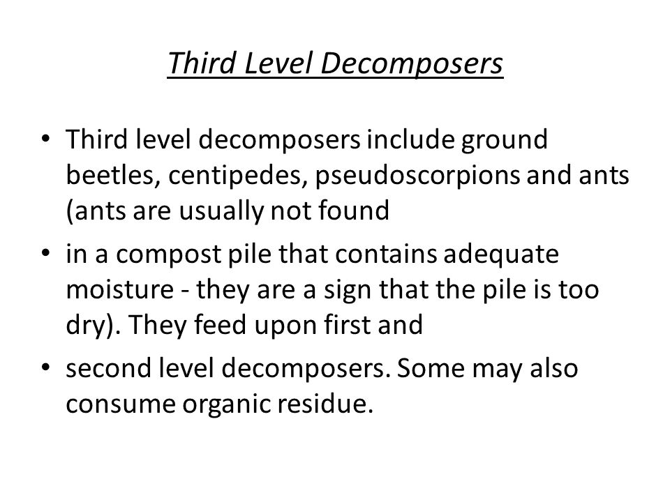 Third Level Decomposers