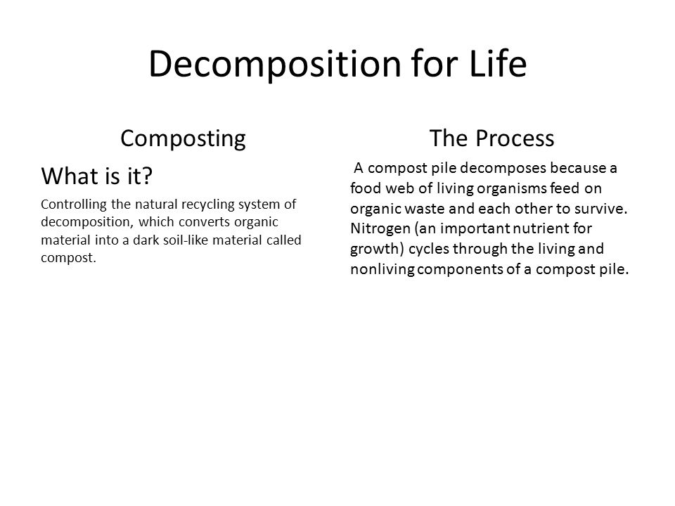 Decomposition for Life