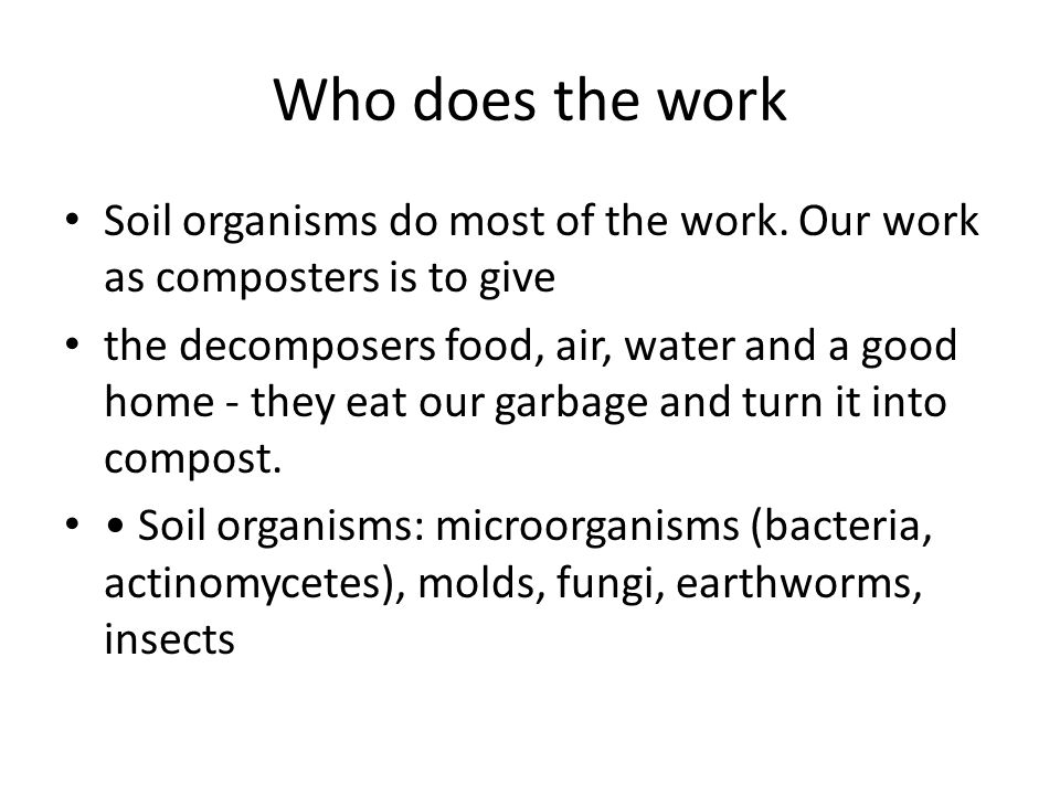 Who does the work Soil organisms do most of the work. Our work as composters is to give.