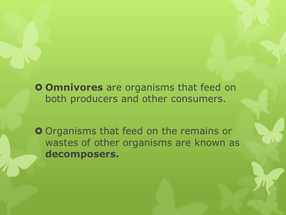 Omnivores are organisms that feed on both producers and other consumers.