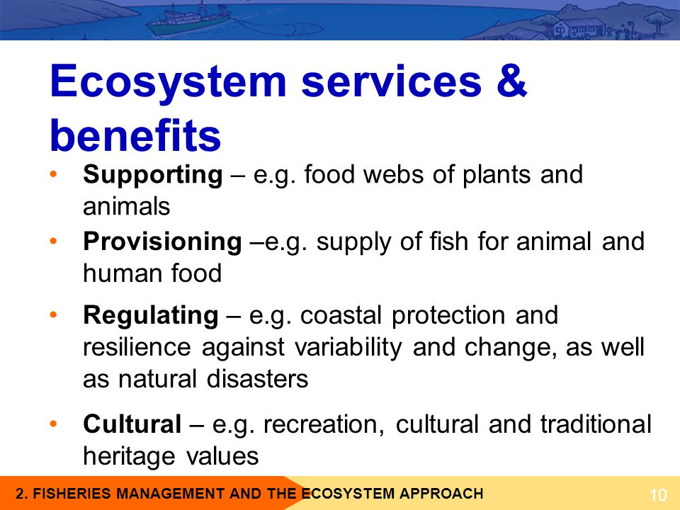 Ecosystem services & benefits