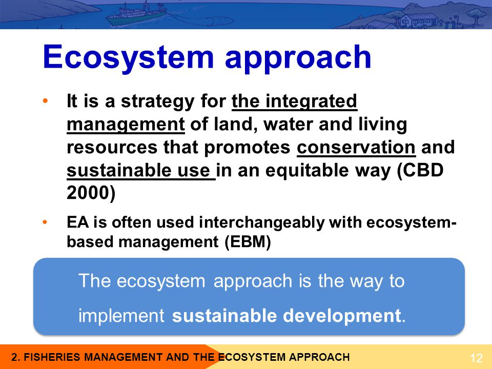 Ecosystem approach