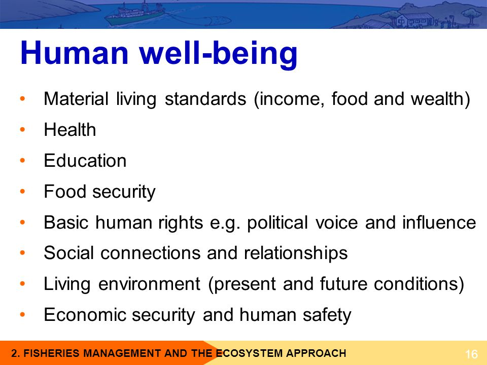Human well-being Material living standards (income, food and wealth)