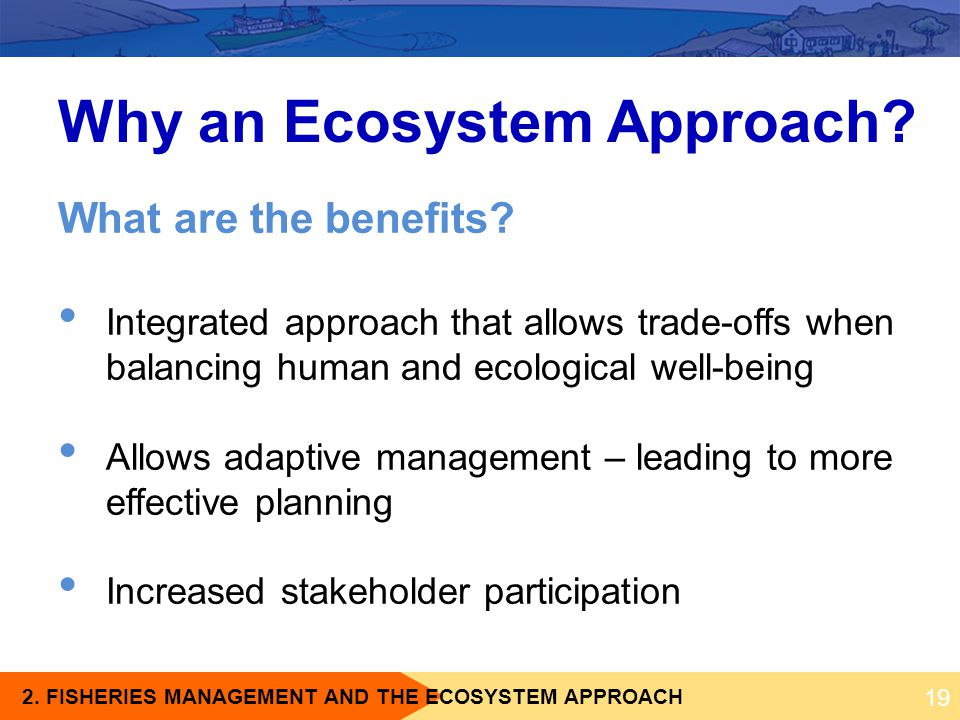 Why an Ecosystem Approach