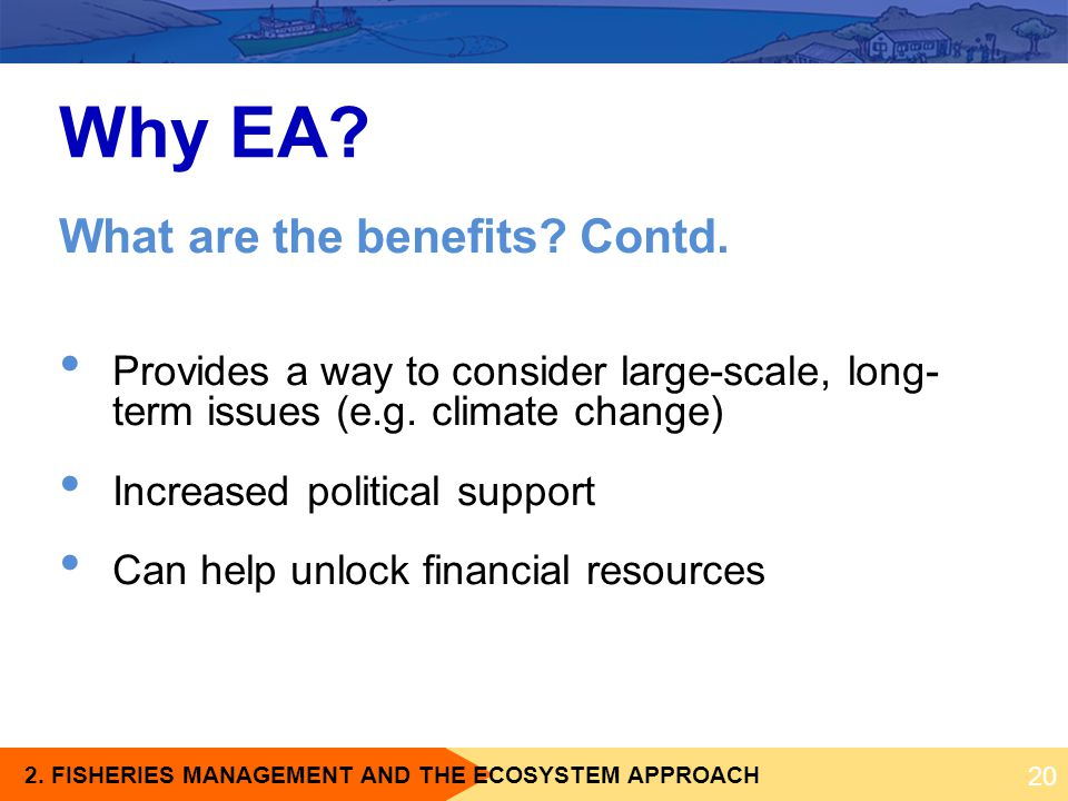 Why EA What are the benefits Contd.