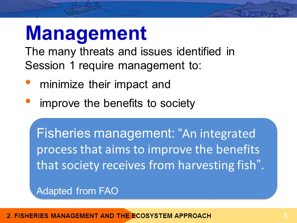 Management The many threats and issues identified in Session 1 require management to: minimize their impact and.