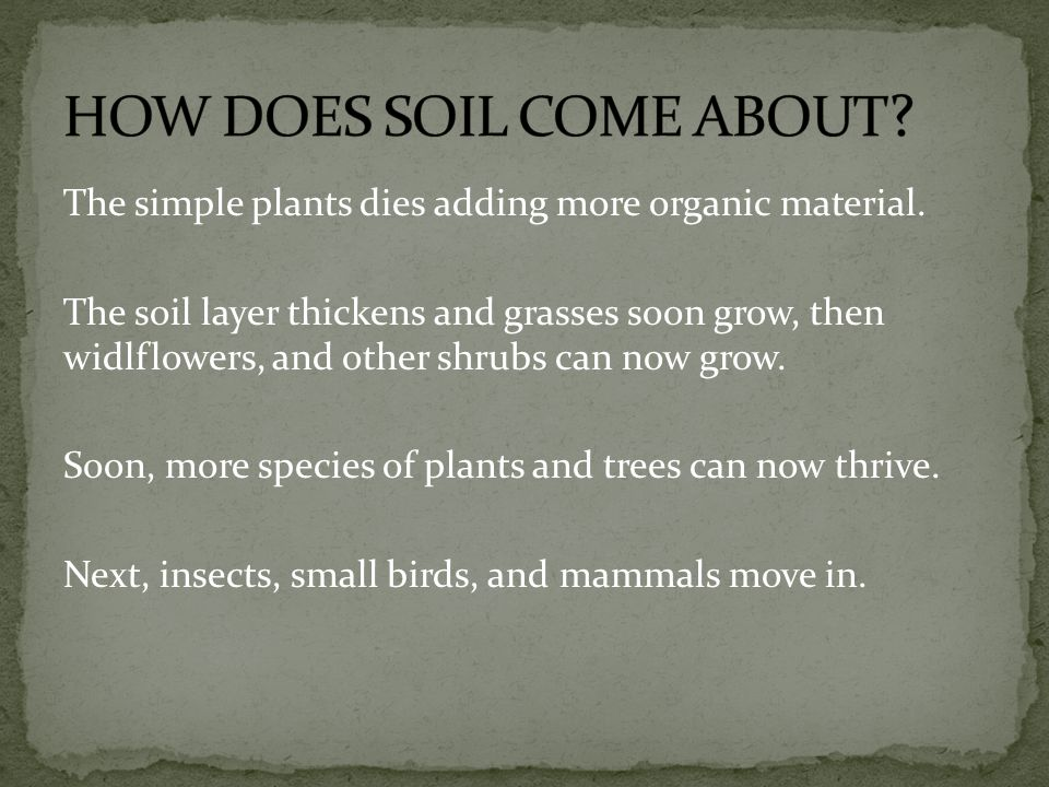 HOW DOES SOIL COME ABOUT