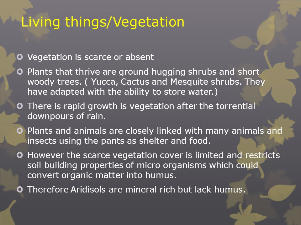 Living things/Vegetation