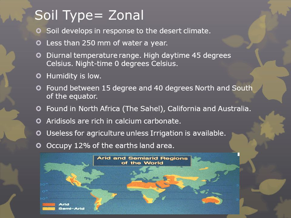 Soil Type= Zonal Soil develops in response to the desert climate.