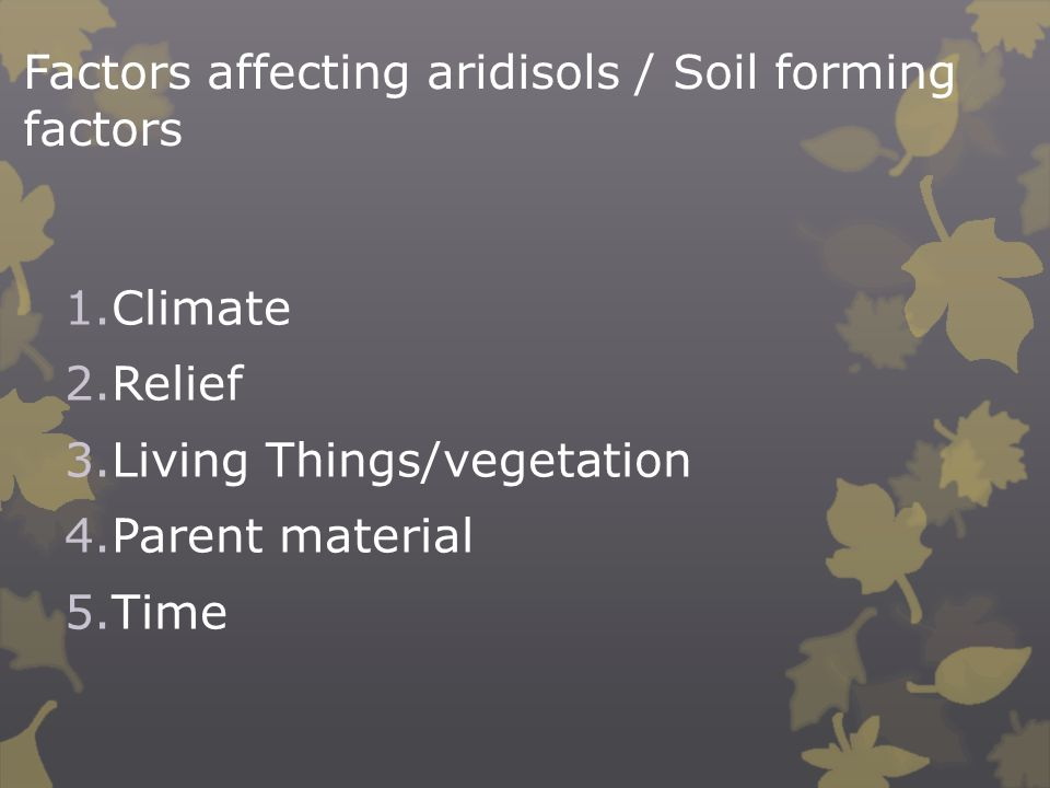 Factors affecting aridisols / Soil forming factors