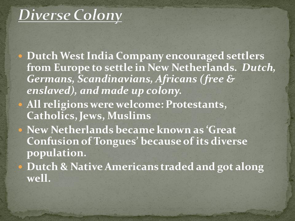 Diverse Colony
