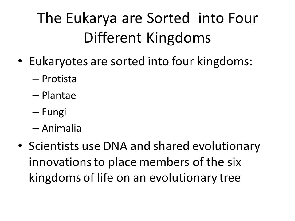The Eukarya are Sorted into Four Different Kingdoms