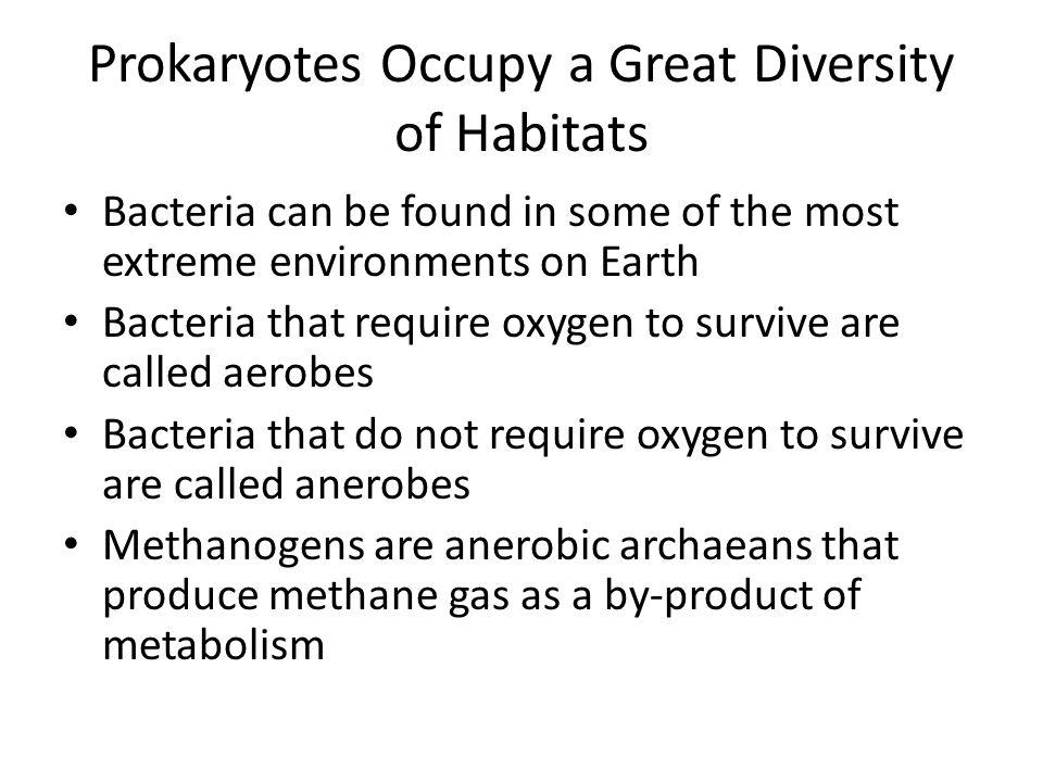 Prokaryotes Occupy a Great Diversity of Habitats