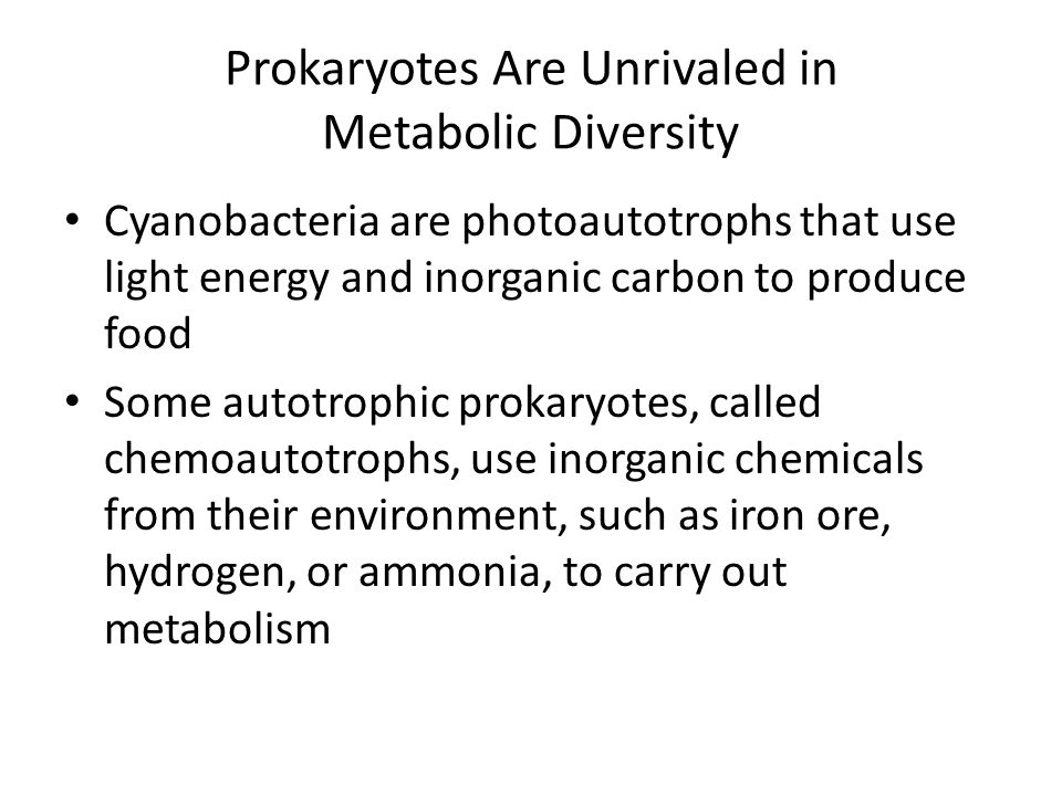 Prokaryotes Are Unrivaled in Metabolic Diversity