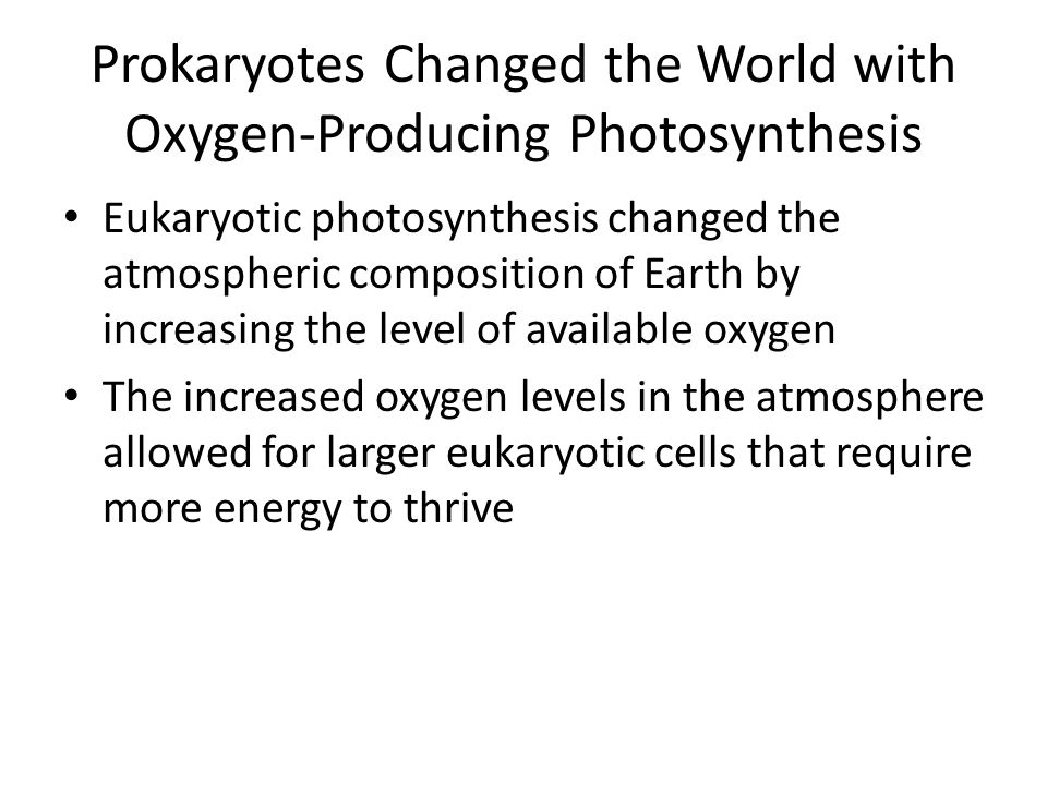Prokaryotes Changed the World with Oxygen-Producing Photosynthesis