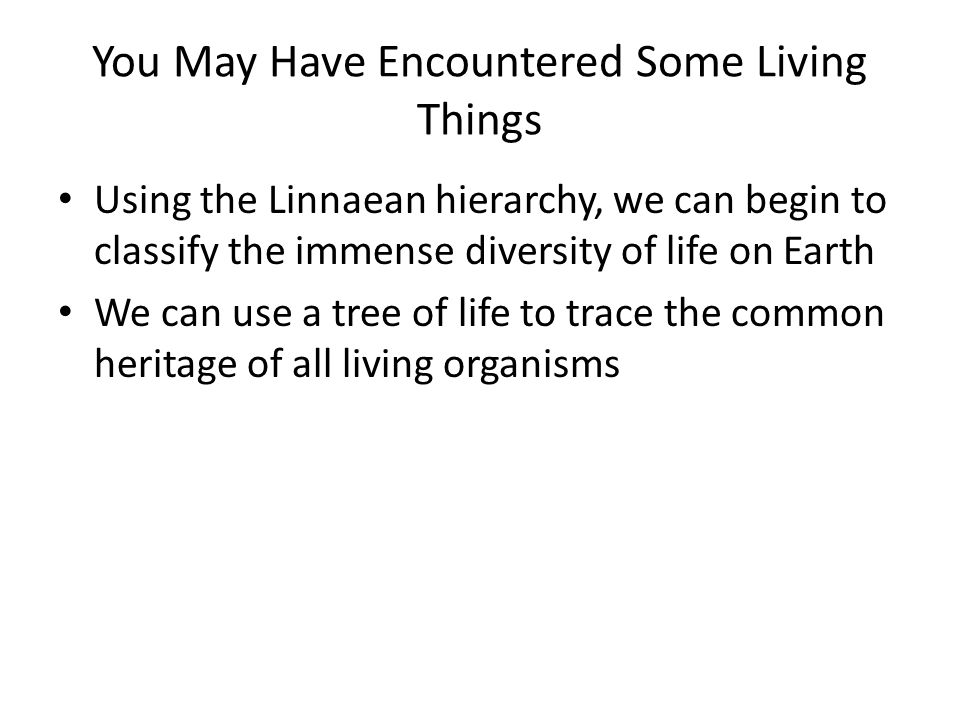 You May Have Encountered Some Living Things