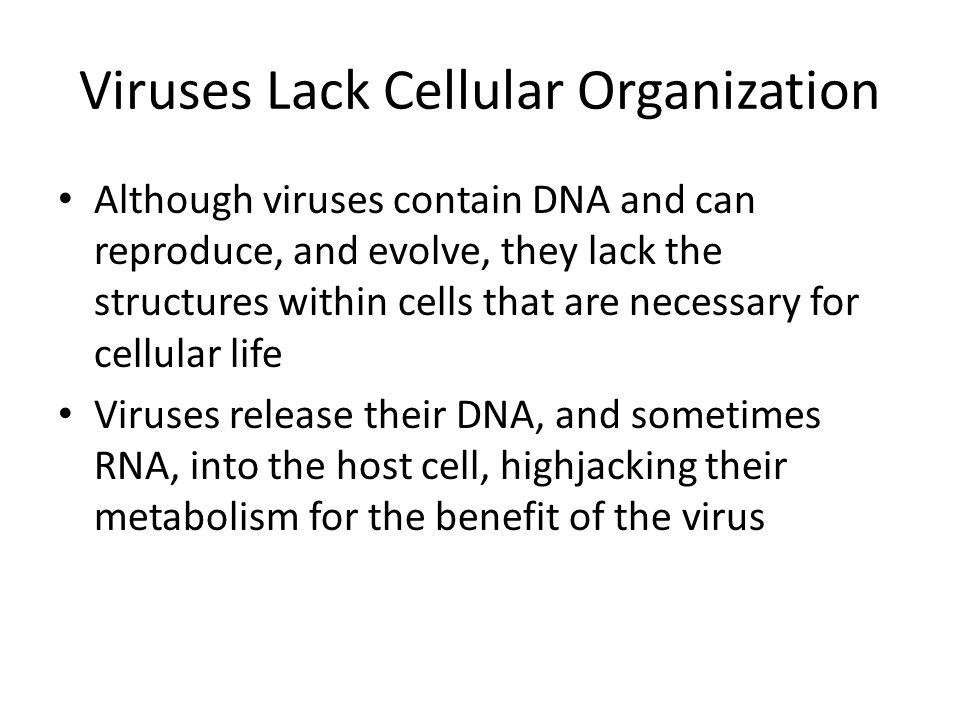 Viruses Lack Cellular Organization