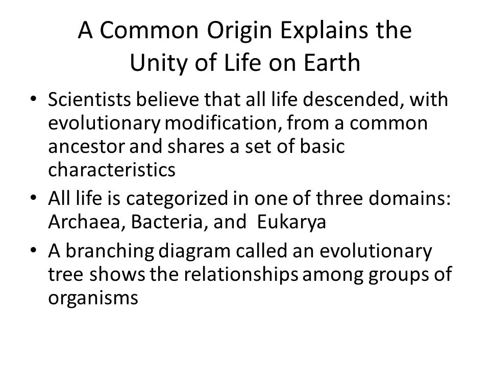 A Common Origin Explains the Unity of Life on Earth