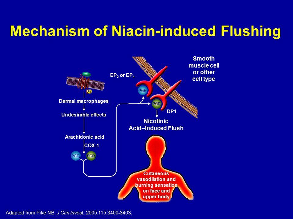 Mechanism of Niacin-induced Flushing