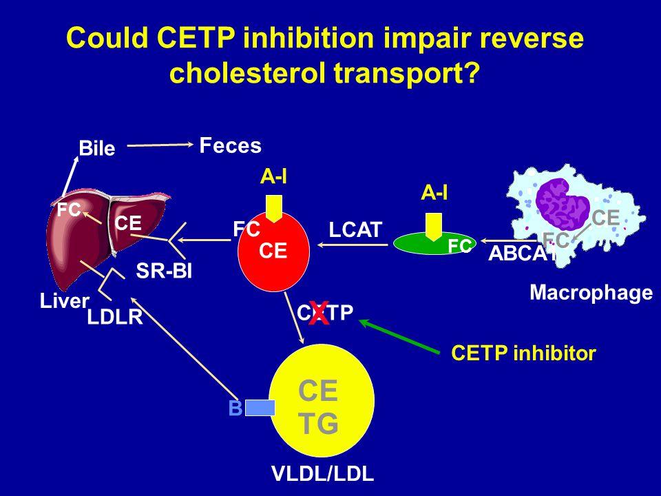 Could CETP inhibition impair reverse cholesterol transport