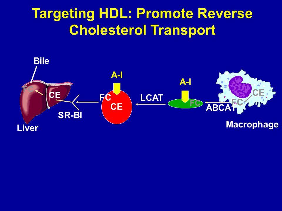 Targeting HDL: Promote Reverse Cholesterol Transport