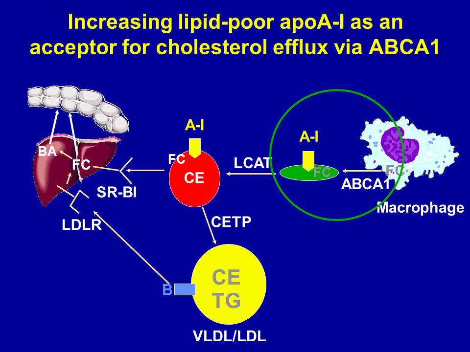 Increasing lipid-poor apoA-I as an acceptor for cholesterol efflux via ABCA1