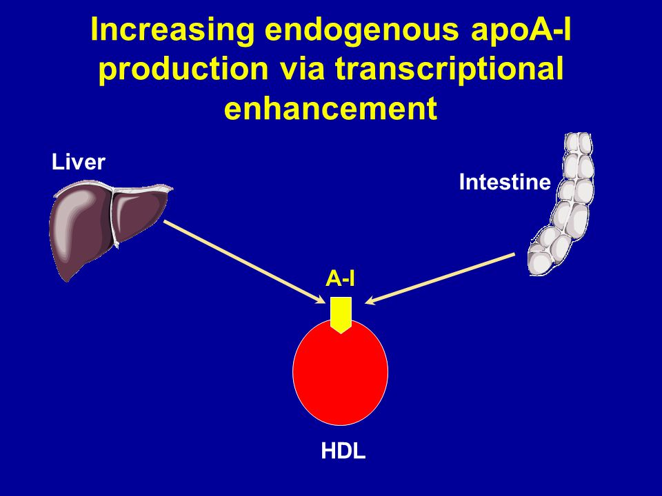 Increasing endogenous apoA-I production via transcriptional enhancement